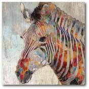 Zebra Embers 16