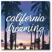 California Dreaming 16