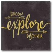 Dream Explore Discover 16