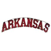 Arkansas Collegiate Metal Sign with Lights