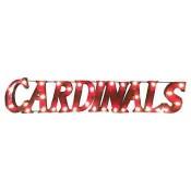 Louisville Cardinals Collegiate Metal Sign with Lights