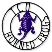 TCU Horned Frogs 18