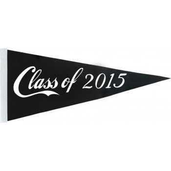 Class of 2015 Pennant